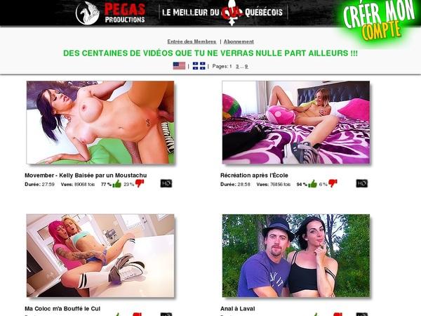 Pegas Productions Webcams