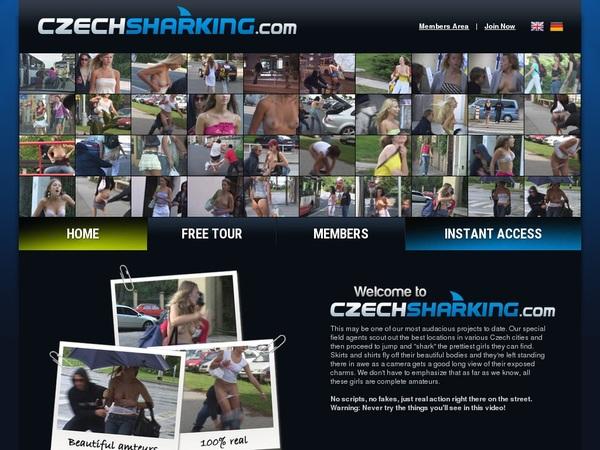 Free User For Czech Sharking
